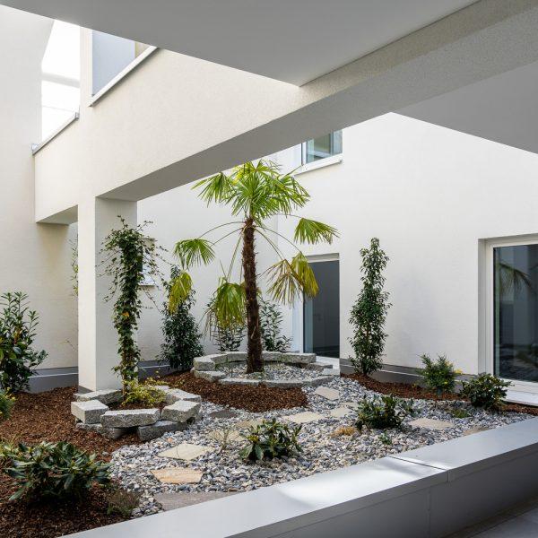 Atrium, Pflanzen_DSC7951